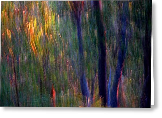 Michelle Wrighton Greeting Cards - Faeries in the Forest Greeting Card by Michelle Wrighton