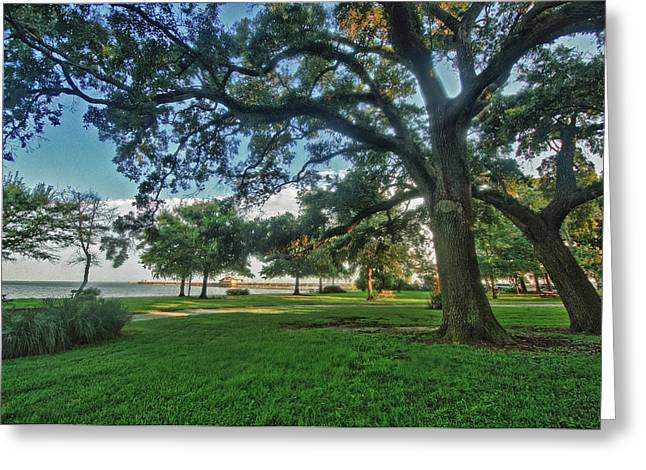 Crimson Tide Greeting Cards - Fairhope Lower Park 4 Greeting Card by Michael Thomas