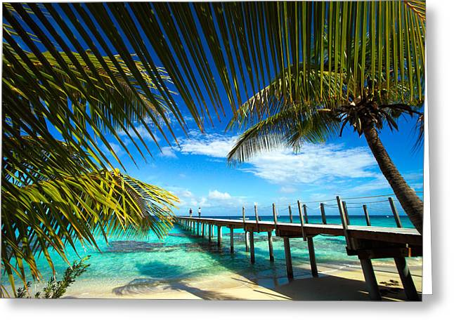 Kia Greeting Cards - Fakarava Atoll Greeting Card by David Cornwell/First Light Pictures, Inc - Printscapes