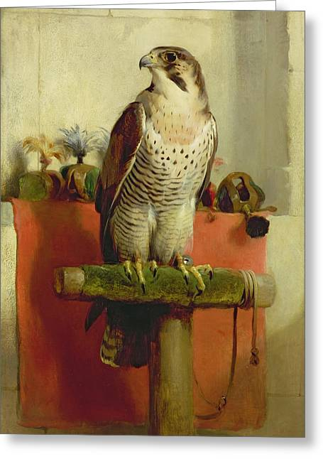 Animals Paintings Greeting Cards - Falcon Greeting Card by Sir Edwin Landseer