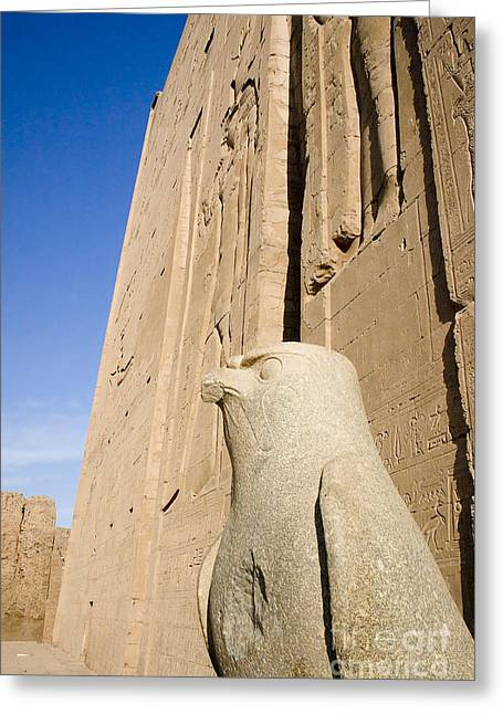 Horus Greeting Cards - Falcon Statue at Edfu Greeting Card by Darcy Michaelchuk