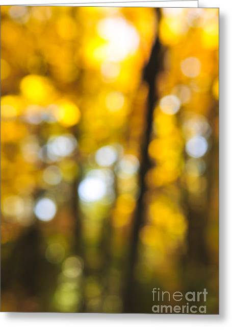 Vitality Greeting Cards - Fall abstract Greeting Card by Elena Elisseeva