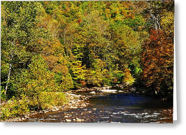 Fall along Elk River Greeting Card by Thomas R Fletcher