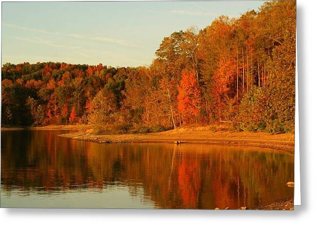 Southern Indiana Greeting Cards - Fall at Patoka Greeting Card by Brandi Allbright