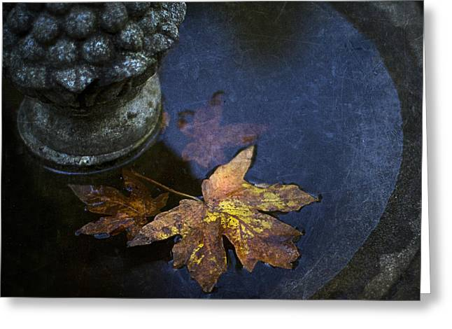 Fountain Greeting Cards - Fall At The Fountain Greeting Card by Rebecca Cozart