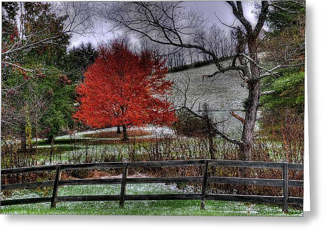 Virginia Farm Greeting Cards - Fall Begins Greeting Card by Todd Hostetter