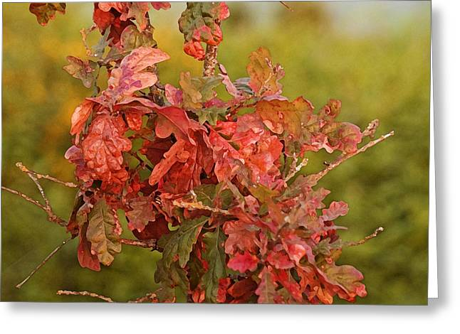 Pacific Northwest Mixed Media Greeting Cards - Fall Bouquet Greeting Card by Bonnie Bruno