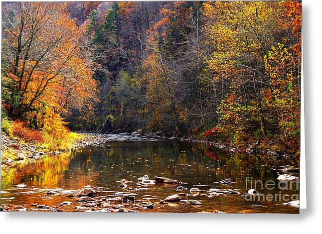 Rushing Stream Greeting Cards - Fall Color Elk River Greeting Card by Thomas R Fletcher