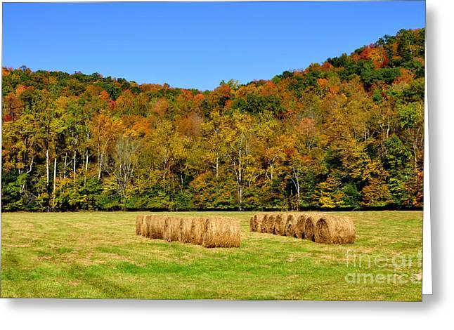 Randolph County Greeting Cards - Fall Color Randolph County West Virginia Greeting Card by Thomas R Fletcher