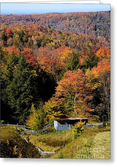Randolph County Greeting Cards - Fall Color West Virginia Greeting Card by Thomas R Fletcher