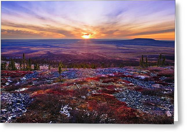 Lichen Image Greeting Cards - Fall Colours And Sunset Along Dempster Greeting Card by Yves Marcoux