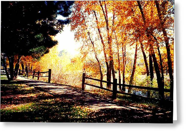 Web Gallery Greeting Cards - Fall day Greeting Card by David Alvarez