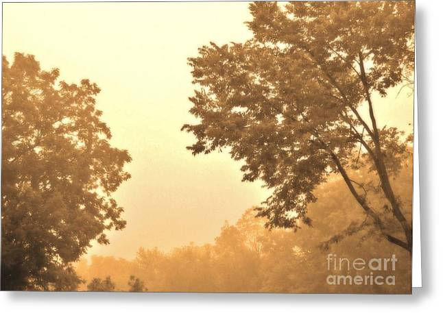 Fall Foggy Morning Greeting Card by Marsha Heiken