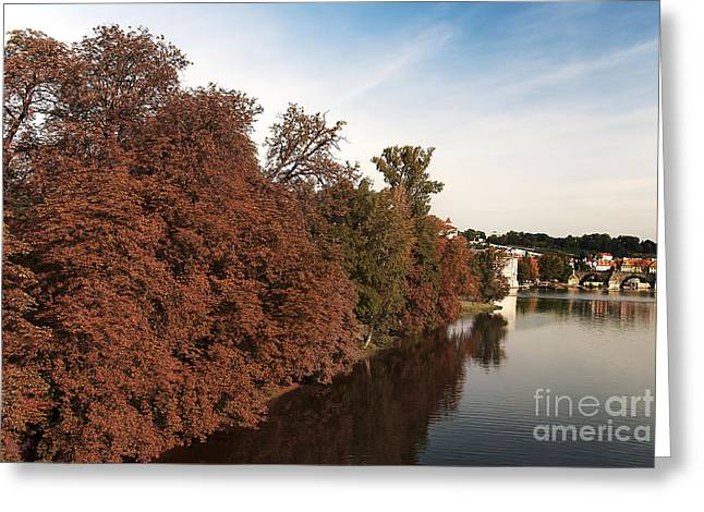 Fall River Scenes Photographs Greeting Cards - Fall foliage Greeting Card by Ivy Ho