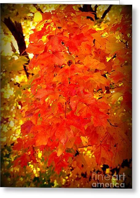 Botanical Greeting Cards - Fall Foliage Greeting Card by Susanne Van Hulst