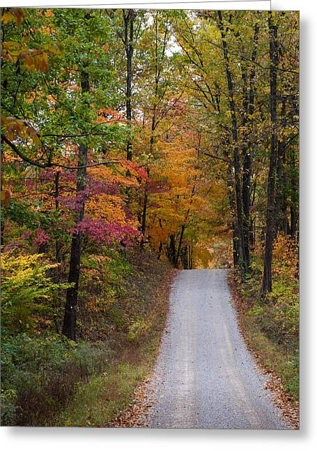 Gravel Road Greeting Cards - Fall in Southern Indiana Greeting Card by Melissa Wyatt