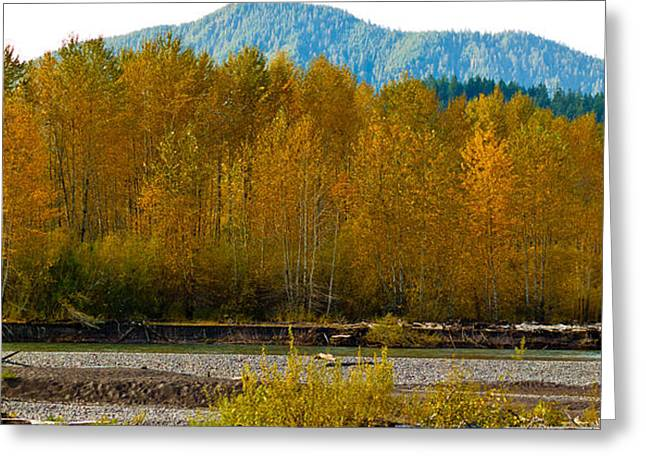 Vermont Photographs Greeting Cards - Fall in the mountains Greeting Card by Robert  Torkomian