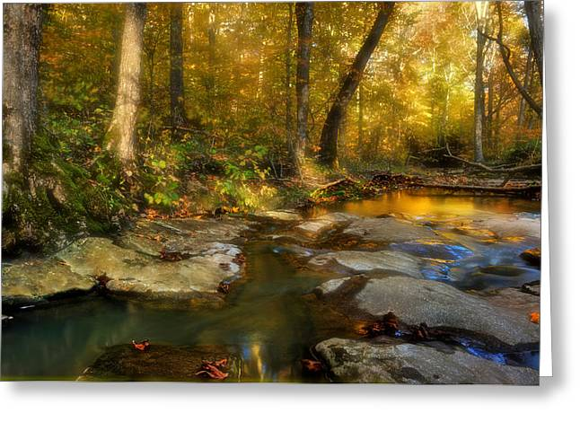 Southern Illinois Greeting Cards - Fall in the Shawnee National Forest Greeting Card by Donna Caplinger