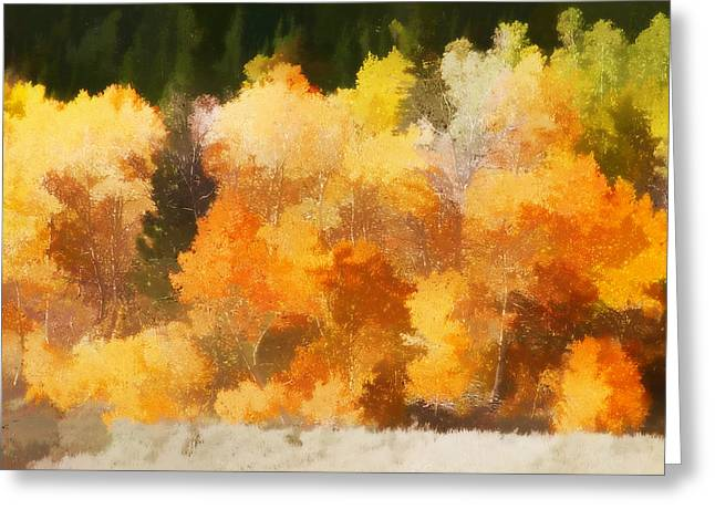 Brown Leaves Greeting Cards - Fall in the Sierra III Greeting Card by Carol Leigh