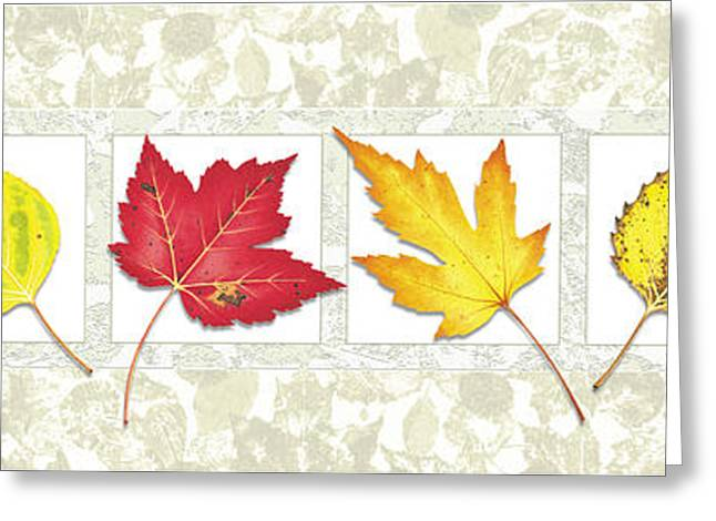 Fall Turnover Greeting Cards - Fall Leaf Panel Greeting Card by JQ Licensing