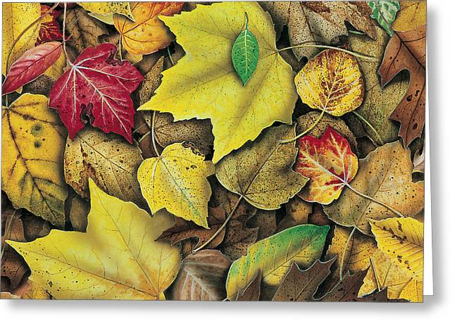 Oak Tree Paintings Greeting Cards - Fall Leaf Study Greeting Card by JQ Licensing