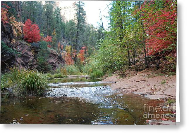 Oak Creek Greeting Cards - Fall Licks Both Sides of the River Greeting Card by Heather Kirk