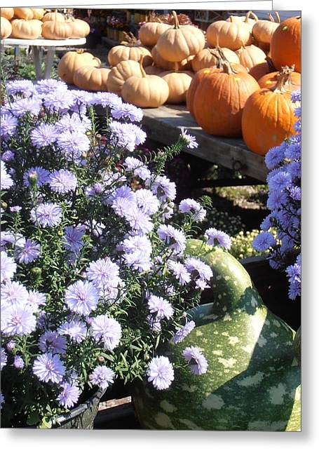 Fall Medley Greeting Card by Kimberly Perry