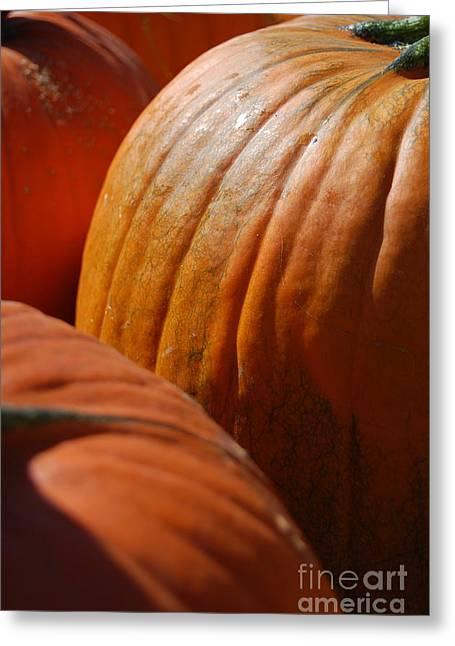Samhaim Greeting Cards - Fall Pumpkins Greeting Card by First Star Art