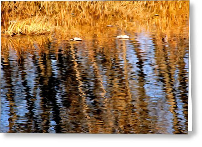 Sunset Greeting Cards Digital Art Greeting Cards - Fall Reflection On The Poudre River Greeting Card by James Steele