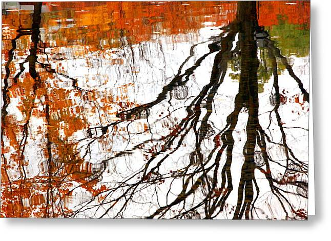 Reflecting Water Greeting Cards - Fall Reflections Greeting Card by Valentino Visentini