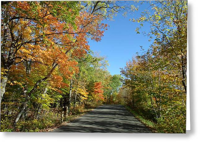 Fall Road In Blue Greeting Card by Brian  Maloney