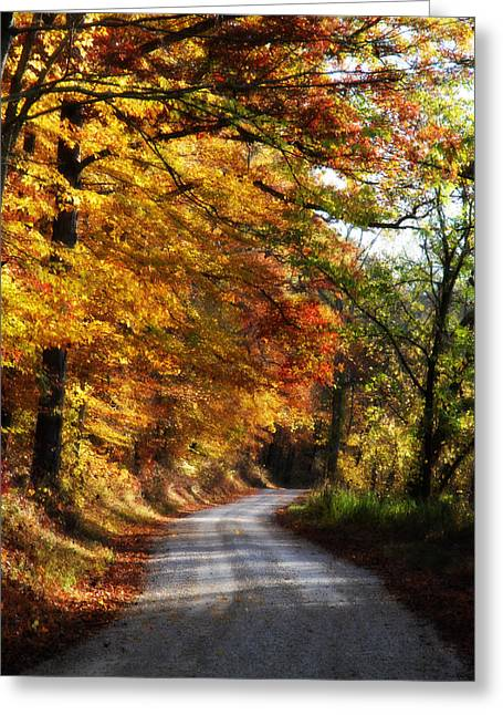 Cheryl Helms Greeting Cards - Fall Splendor Greeting Card by Cheryl Helms