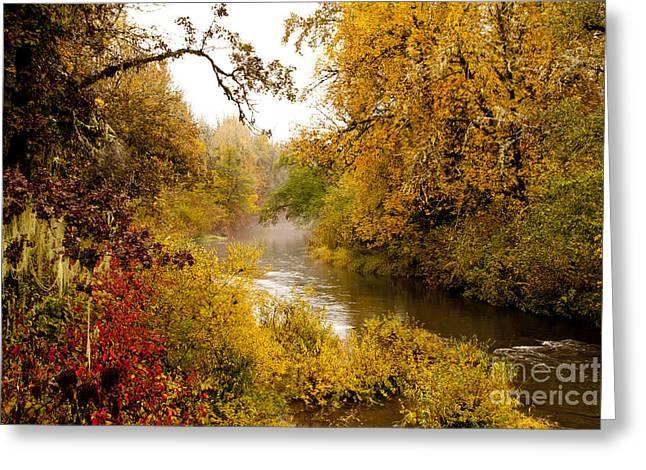 Fall Splendor Greeting Cards - Fall Splendor Greeting Card by Margaret Hood