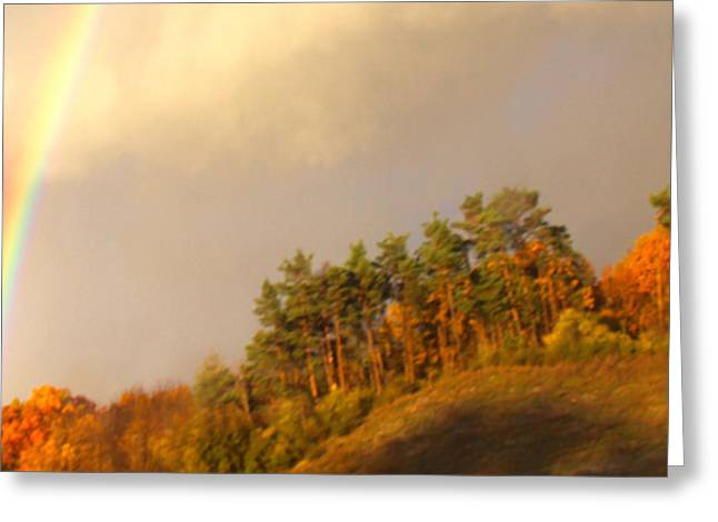 Awesomeness Greeting Cards - Fall Storm Rainbow Greeting Card by Debra     Vatalaro