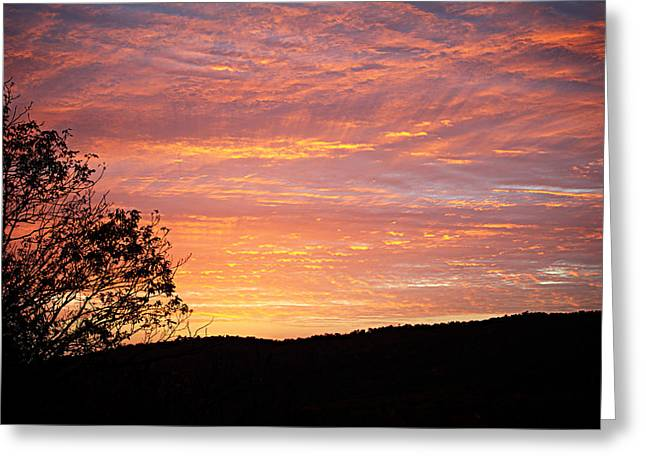 Fall Sunrise Greeting Card by Metro DC Photography