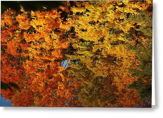 Nature Center Pond Paintings Greeting Cards - Fall Textures in Water Greeting Card by LeeAnn McLaneGoetz McLaneGoetzStudioLLCcom