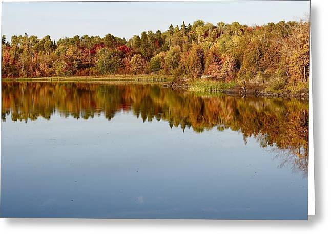 Sudbury River. Greeting Cards - Fall Tranquility Greeting Card by Shirley Mailloux