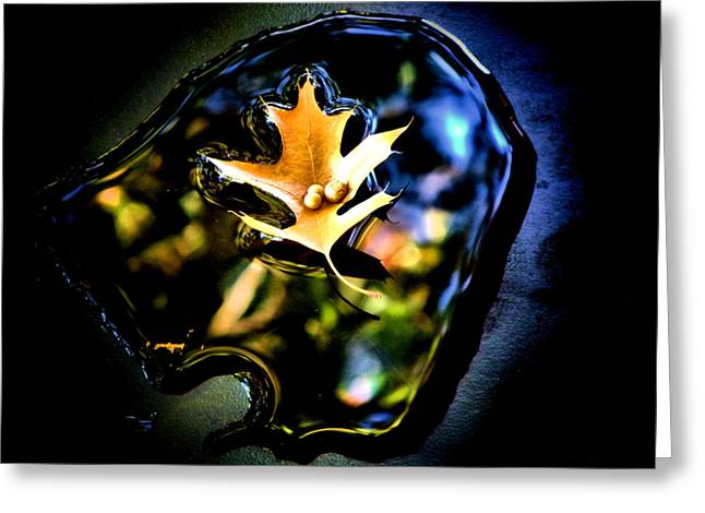 Abstract Water And Fall Leaves Greeting Cards - Fall Vision Greeting Card by Karen M Scovill