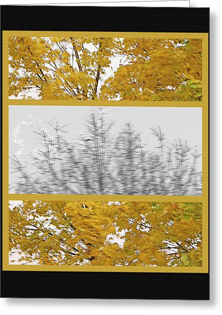 Fallen Leaf Mixed Media Greeting Cards - Fall Wind Triptych Greeting Card by Steve Ohlsen