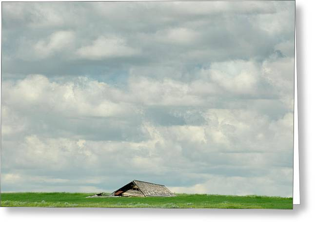 Roadway Greeting Cards - Fallen Barn Greeting Card by Roderick Bley