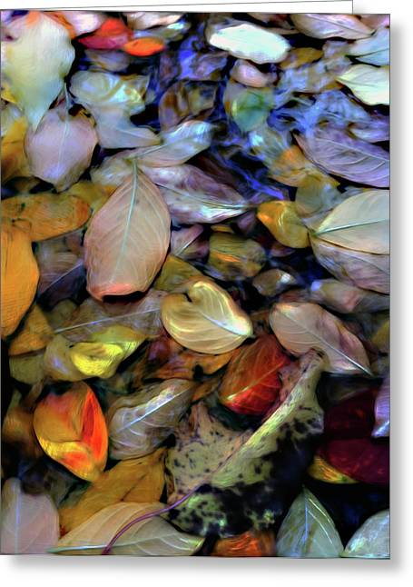 Fallen Leaf Mixed Media Greeting Cards - Fallen Leaves Greeting Card by Don Wright