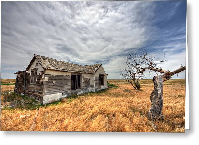 Rustic House Greeting Cards - Falling Apart Greeting Card by Shane Linke