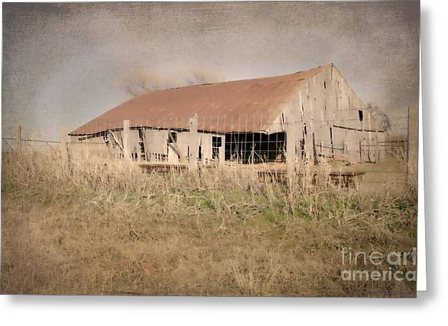 Tin Roof Greeting Cards - Falling Down Greeting Card by Betty LaRue