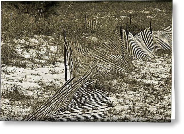 Susan Leggett Greeting Cards - Falling Dune Fence Greeting Card by Susan Leggett