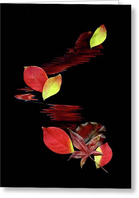 Abstract Expression Greeting Cards - Falling Leaves Greeting Card by Gerlinde Keating - Keating Associates Inc