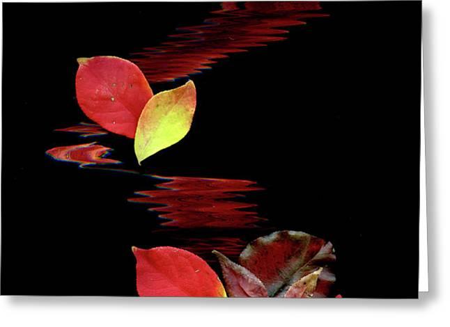 Falling Leaves Greeting Card by Gerlinde Keating - Keating Associates Inc