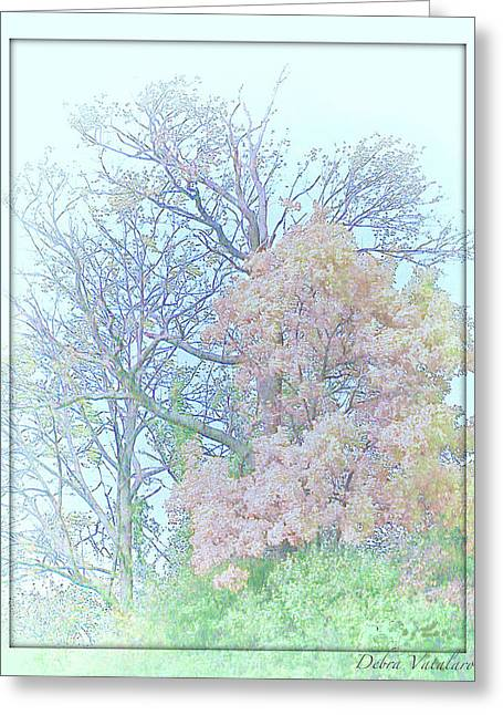 Colors Of Autumn Drawings Greeting Cards - Falling Peace Greeting Card by Debra     Vatalaro