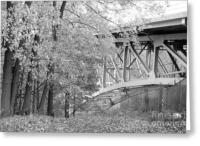 Akron Falls Greeting Cards - Falling under the bridge Greeting Card by Trish Hale