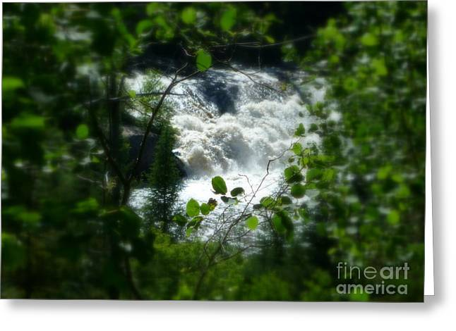 Nature Pyrography Greeting Cards - Falls In Forest Frame Greeting Card by Sue Wild Rose