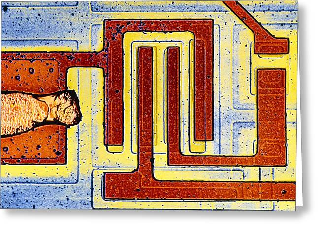 Transistor Greeting Cards - False Colour Sem Of Integrated Circuit Greeting Card by Dr Jeremy Burgess.